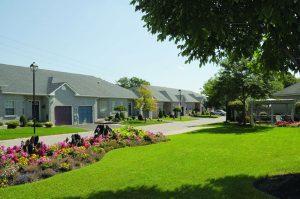 Newton-Trelawney Property Management